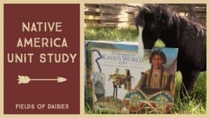 American History Books Native America