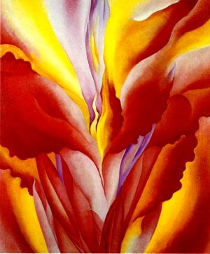 red canna georgia o'keeffe