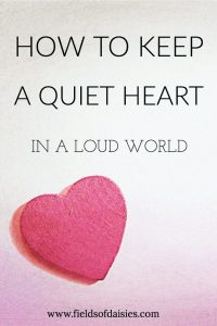 Quiet Heart, Loud World