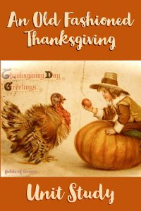 thanksgiving turkey pilgrim child apple pumpkin vintage postcard