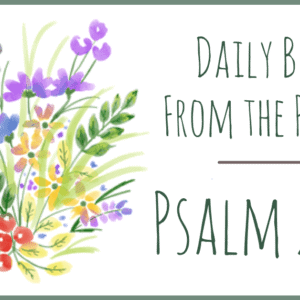 Praying Psalm 2 and 3