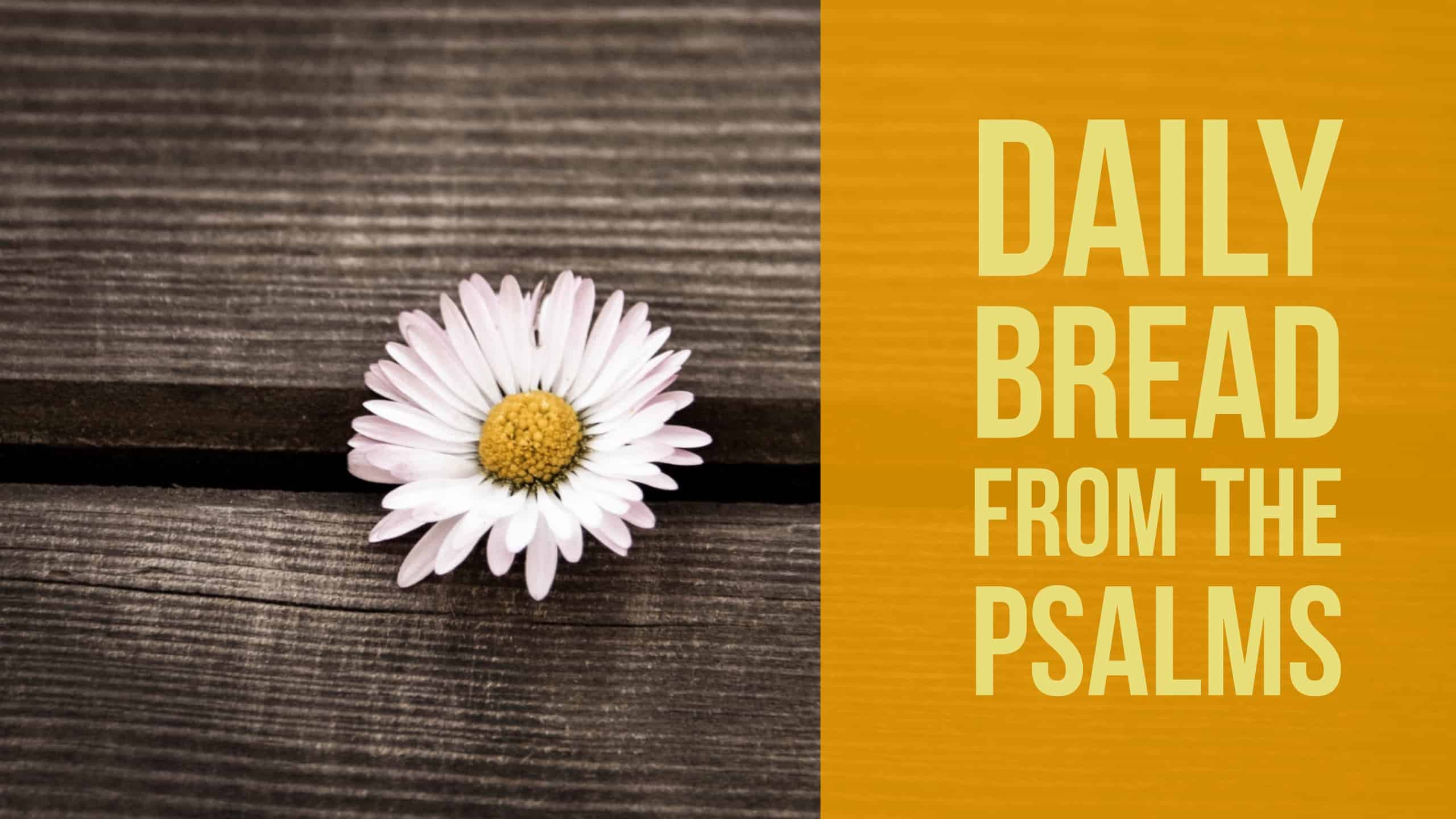 Daily Bread from the Psalms Psalm 1