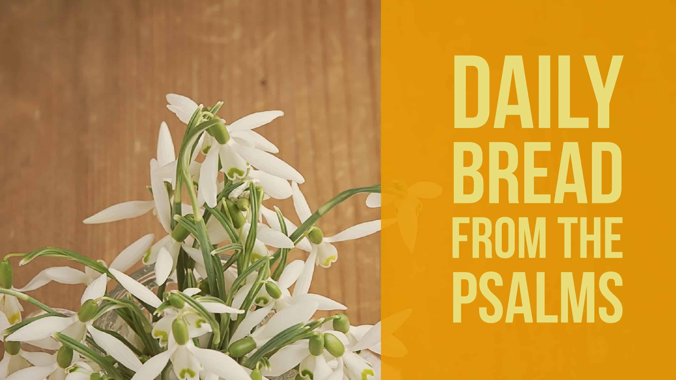 Praying the Psalms- Psalm 9