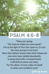 Psalm 4 light of God