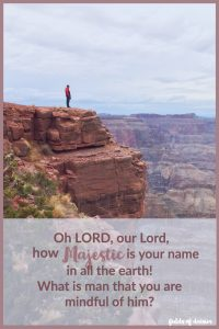 How majestic is your name Psalm 8