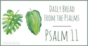 Psalm 11 Devotional