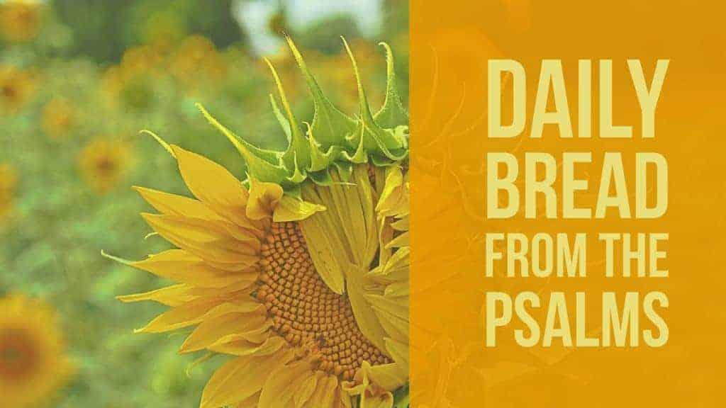 Praying Psalm 12