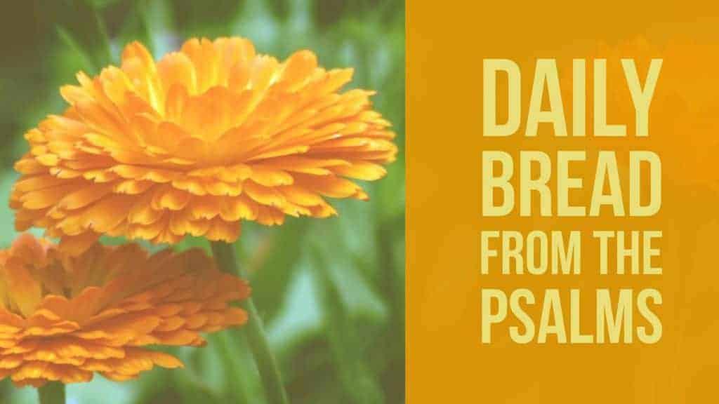 praying psalm 18
