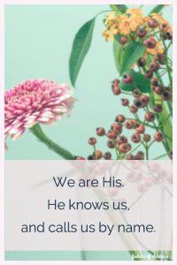 flowers zinnia Psalm 23 John 10 verse