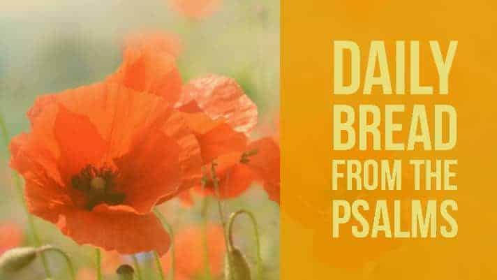 Psalm 24 Daily Devotional (Praying the Psalms)