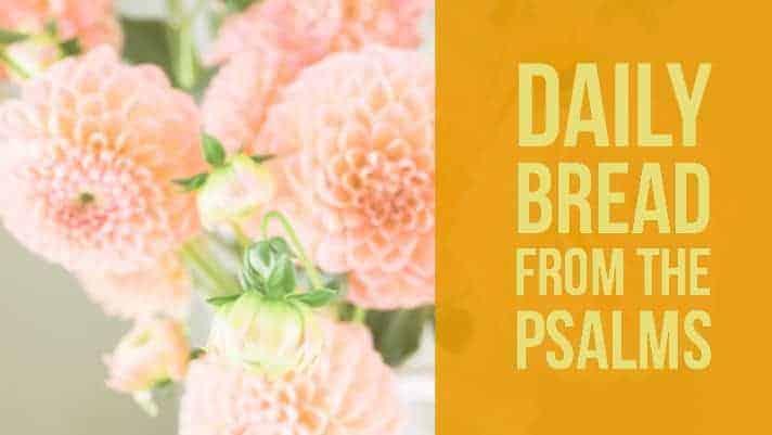praying psalm 26