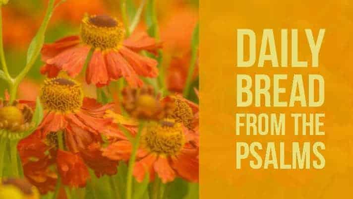 psalm 28 - praying the psalms