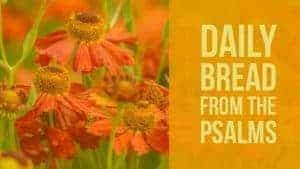Praying Psalm 28