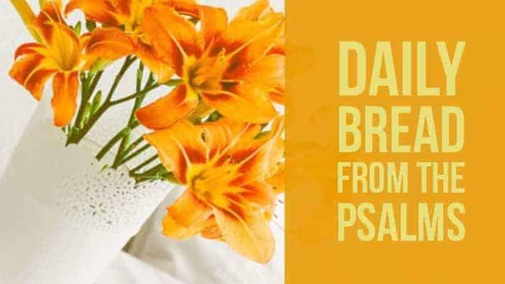 Praying Psalm 33