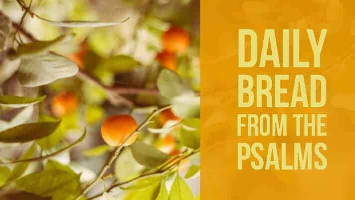 Psalm 35 Daily Devotions