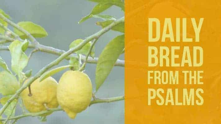 Praying the Psalms- Psalm 36