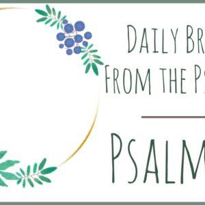 Psalm 18 devotional