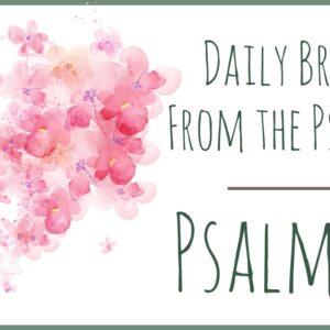 Psalm 13 devotional