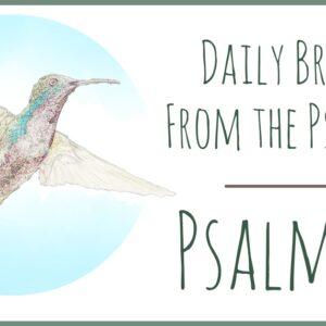 Psalm 27 devotional
