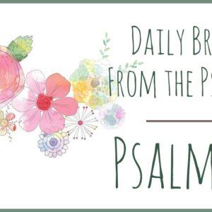 Psalm 22 devotional