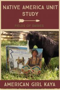 Native America Activities for Kids