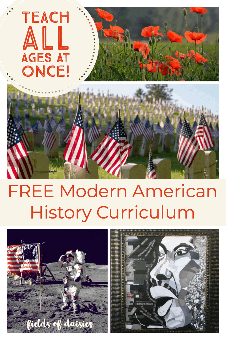 american flags at arlington martin luther king space race and red poppies American History curriculum cover