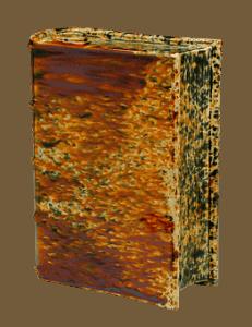 ancient book The Iliad