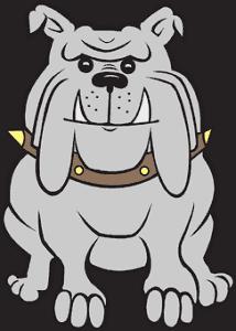 spike dog collar bull dog