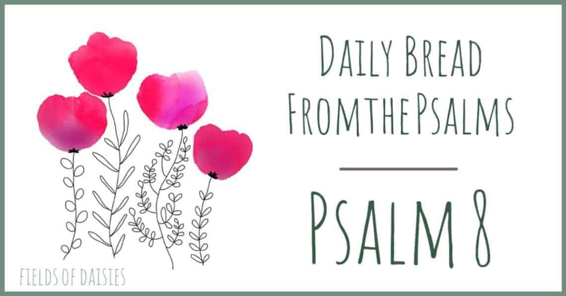 Psalm 8 Devotional