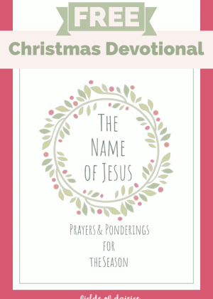 Christmas Devotional Free Name of Jesus
